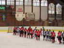 Training hockey camps in the CZECH REPUBLIC